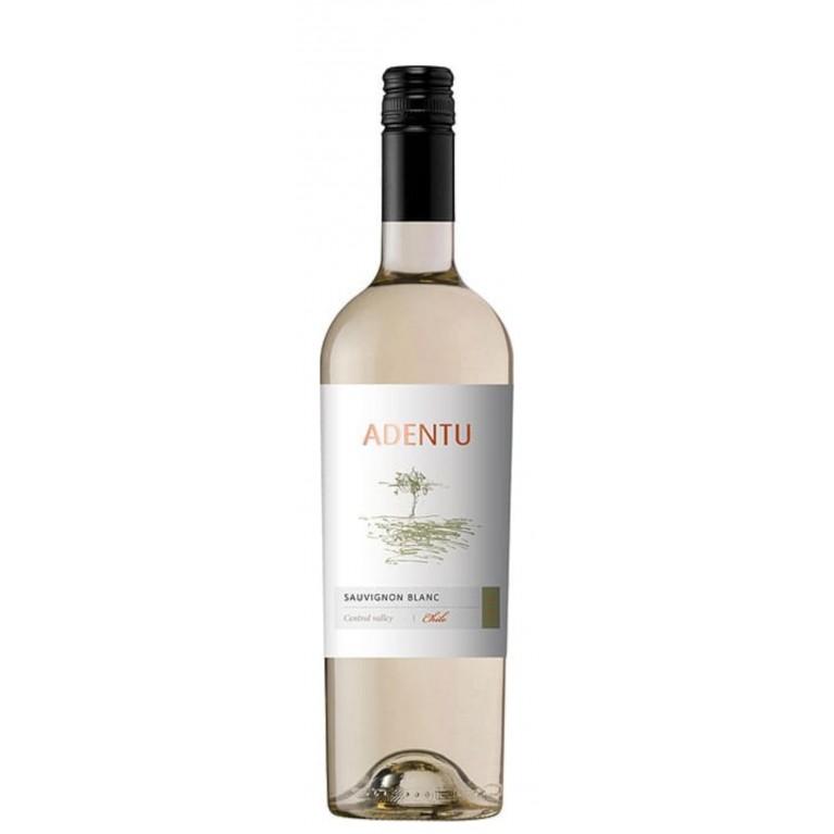 Adentu Sauvignon Blanc trocken