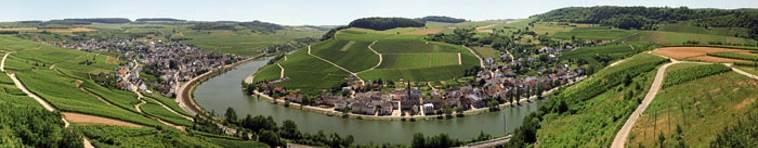 Banner Weinregion Mosel