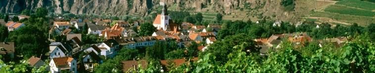 Banner Weinregion Nahe