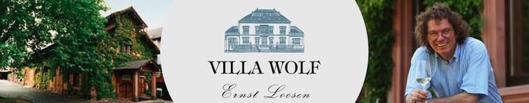 Banner Weingut Villa Wolf