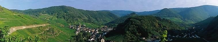 Banner Weinbaugebiet Ahr